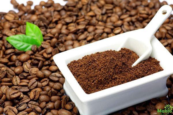 Đồ uống có cồn, cafein cũng là nguyên nhân gây mất sữa
